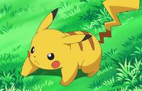 Pikachu tough