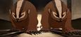 Badgermoles