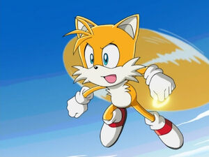 Tails flying