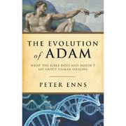 Evolution-of-Adam
