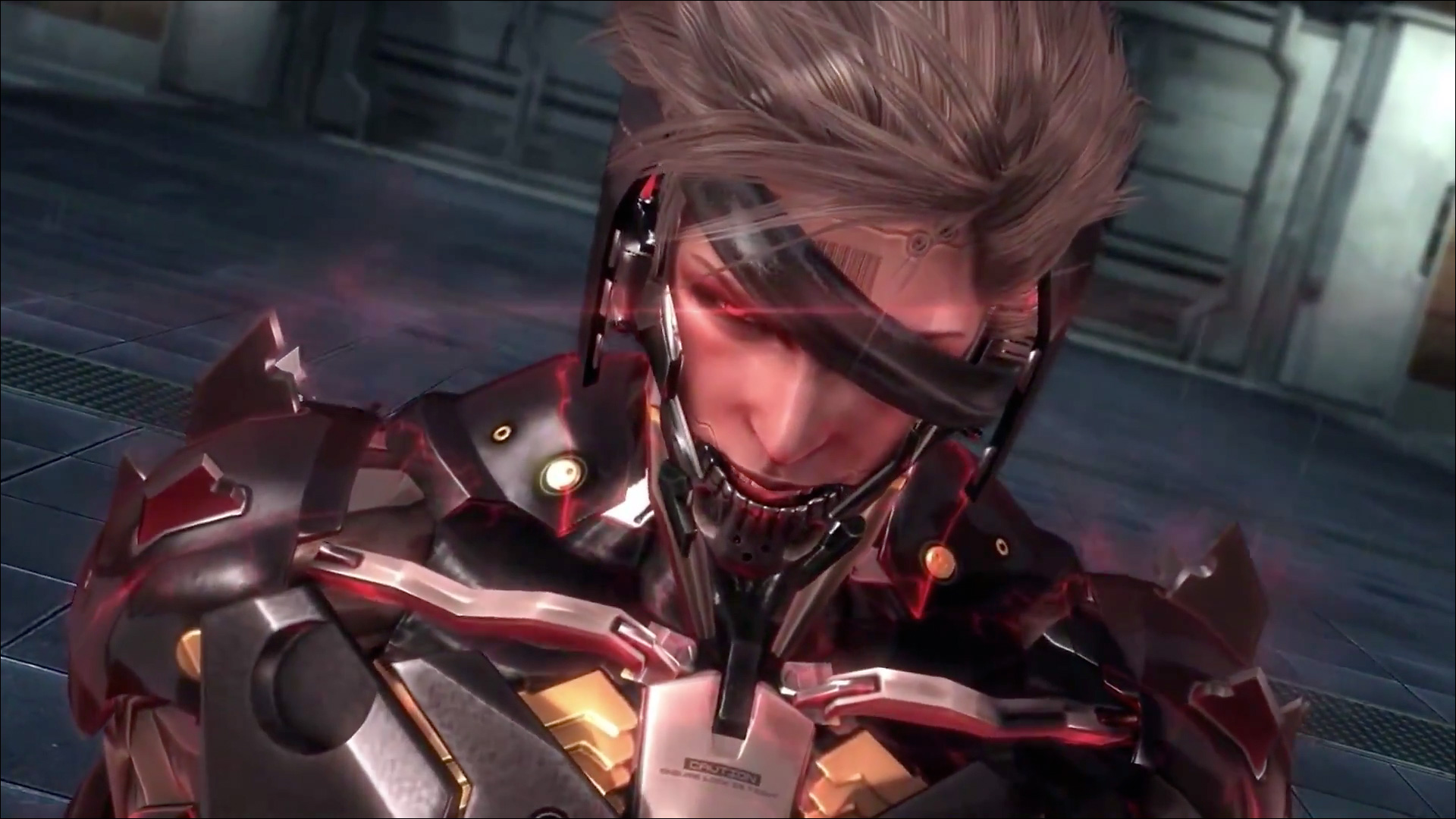 Metal Gear Rising Raiden This Is My Nature