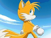 Tails stern