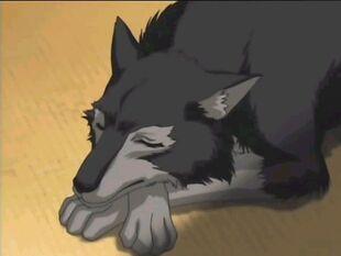 Anime-Animals-anime-animal-6663744-640-480