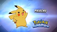 WTP Pikachu (3)