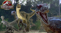 Jurassic park raptor wallpaper by tabbykat32-d64qw25