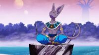 5021728-lord+beerus+day