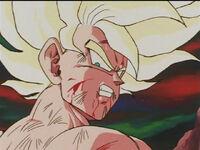 Goku hurt