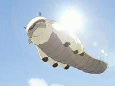 Appa soaring
