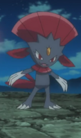 Weavile come at me