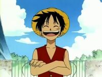 One-Piece-monkey-d-luffy-17703429-512-384