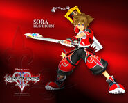 Sora valor form