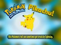 WTP Pikachu (2)