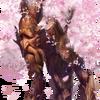 CherryBlossomsSpirit