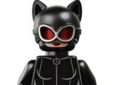 Catwoman (CJDM1999)