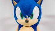 Sonic on Sonic