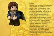 Pippin Info