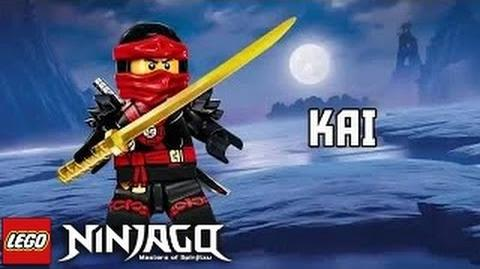Ninjago Possession Kai Official Character Spot