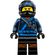 70610Fig1