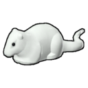 Icon Creature White Rat