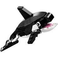 31051 Orca