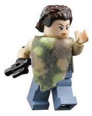 Leia Endor
