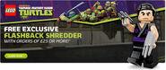 Flashback-shredder
