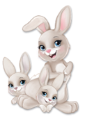 Daisy et bébés lapins