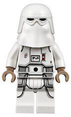 Snowtrooper20192020