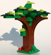5677 Baum