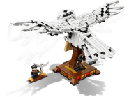75979 Hedwige 4