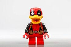 DP Duck