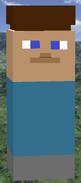 Steve in game