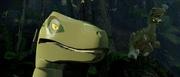 LMSH Raptors