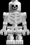 SkeletonTA