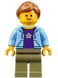 10255 Lego Fan