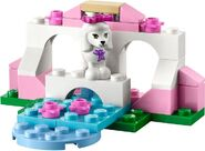 41021 Le caniche et son petit palais 2