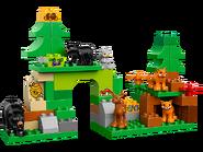 10584 Le Parc de la forêt 2