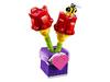 30408 Les tulipes