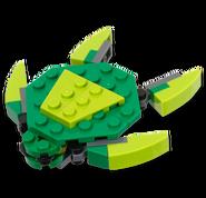 03-13-Turtle-40063-prod-lg
