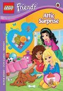 Attic Surprise