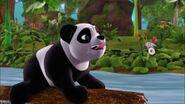 Bambou voyant du bambou-À la recherche du futur marié