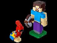 21148 Steve et son perroquet