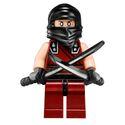Ninja noir