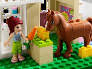 3188 La clinique vétérinaire 3