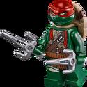 Raphael-79115