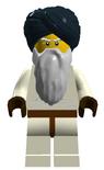 Terroristleader