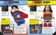 LEGO DC Comics Super Heroes Character Encyclopedia 2