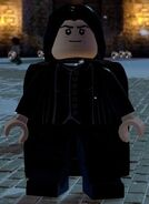Dimensions Snape
