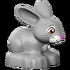 Clovis-10595