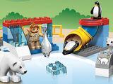 5633 Le zoo polaire
